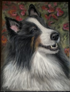 "Siggi, 9"" x 11"" pastel on velour"