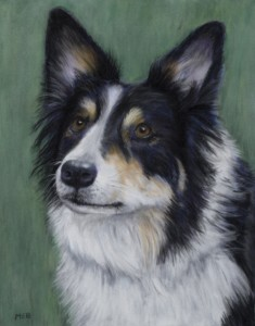 Sadie, 8 x 10 Pastel on Velour