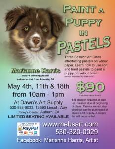 PuppyWorkshopMay2015