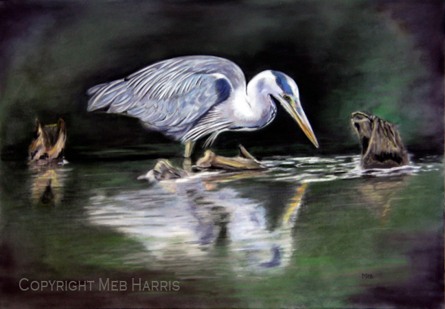 "Blue Heron, 18"" x 13"" pastel, SOLD"